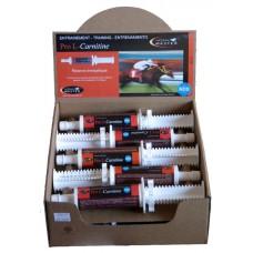 Pro L-Carnitine- 60 ml, pasta pro koně