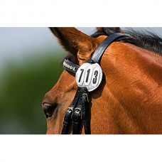 Startovní číslo na uzdečku nebo  sedlo na koně