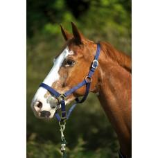 Ohlávka na koně nylonová s přezkami v  tmavě  modré barvě a velikosti  cob