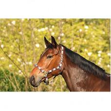 Ohlávka na koně nylonová  s přezkami ve velikosti full, kostkovaná modro šedá