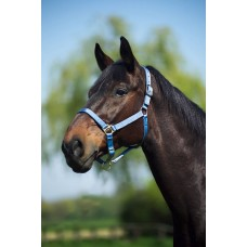 Ohlávka nylonová na koně, kůží podšitá,  v modré barvě a velikosti full