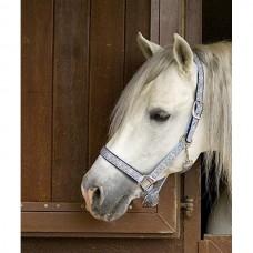 Stájová ohlávka pro koně  ve světle modré barvě a velikosti extra full