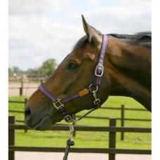 Ohlávka  na koně nylonová v modrovínové barvě a velikosti extra full