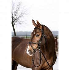 Uzdečka na koně s kombinovaným nánosníkem Coby  v černé barvě a velikosti Pony