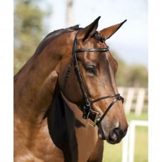Uzdečka na koně, kožená s kombinovaným slabým nánosníkem ve velikosti  EXTRA FULL