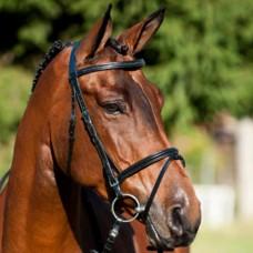 Uzdečka na koně s kombinovaným nánosníkem Cool v černé barvě a velikosti Pony
