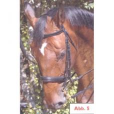 Výprodej - Uzda na koně - kožená - Lizardo