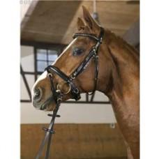 Uzdečka USG -černá kůže, velikost cob, FULL, uzdečka na koně s otěžemi a švédským nánosníkem