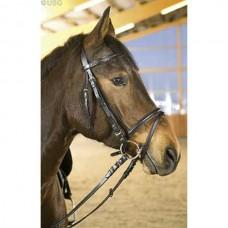 Uzdečka  na koně Basic Plus-černá- velikost full s otěžemi