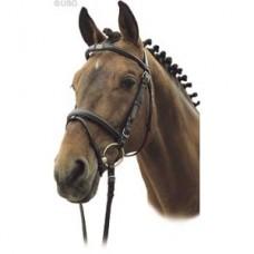 Uzdečka ACTION od USG s kombinovaným nánosníkem, kvalitní kožená uzdečka na koně s otěžemi