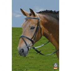 Uzdečka  na poníka, kožená  pony uzdečka v čené barvě v kombinaci s bílou a otěžemi